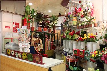 Galerias Alto da Barra Florista Foto 1